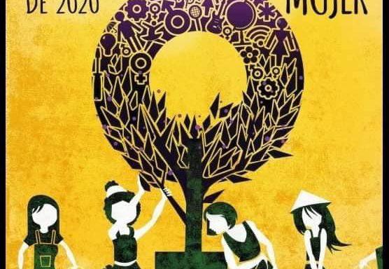 Entrevista a la Colectiva Feminista Sabalera